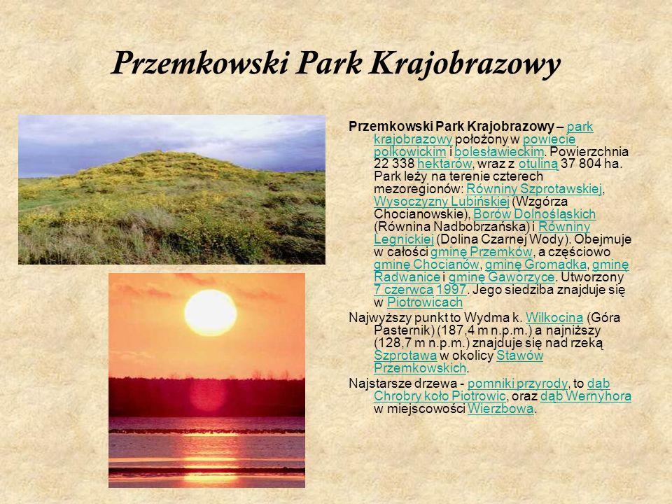 Przemkowski Park Krajobrazowy Przemkowski Park Krajobrazowy – park krajobrazowy położony w powiecie polkowickim i bolesławieckim. Powierzchnia 22 338