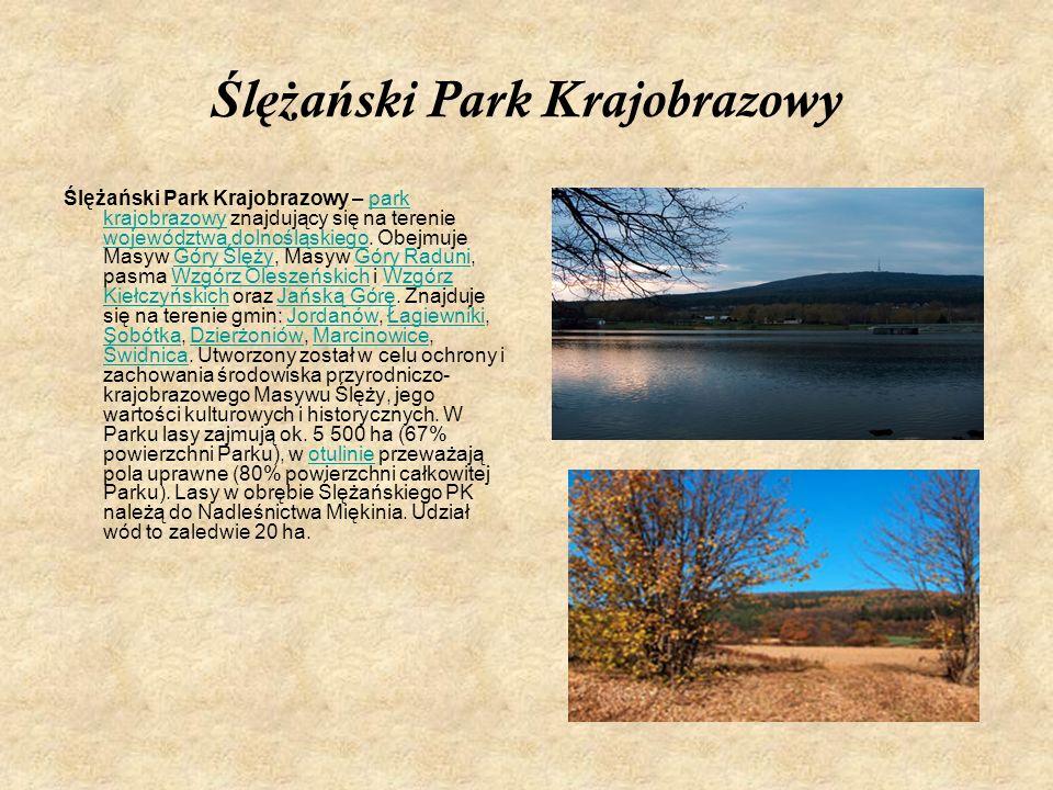 Ś l ęż a ń ski Park Krajobrazowy Ślężański Park Krajobrazowy – park krajobrazowy znajdujący się na terenie województwa dolnośląskiego. Obejmuje Masyw
