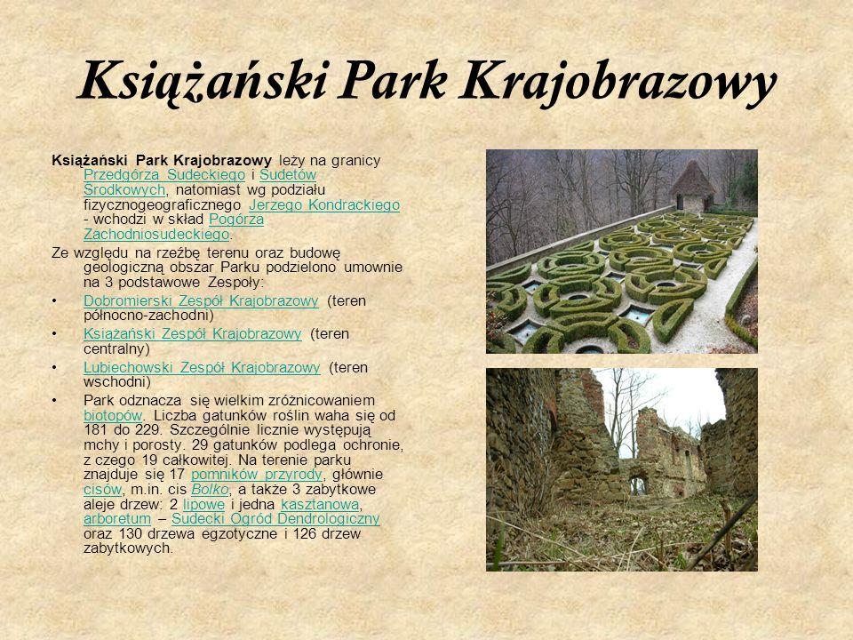 Ksi ąż a ń ski Park Krajobrazowy Książański Park Krajobrazowy leży na granicy Przedgórza Sudeckiego i Sudetów Środkowych, natomiast wg podziału fizycz