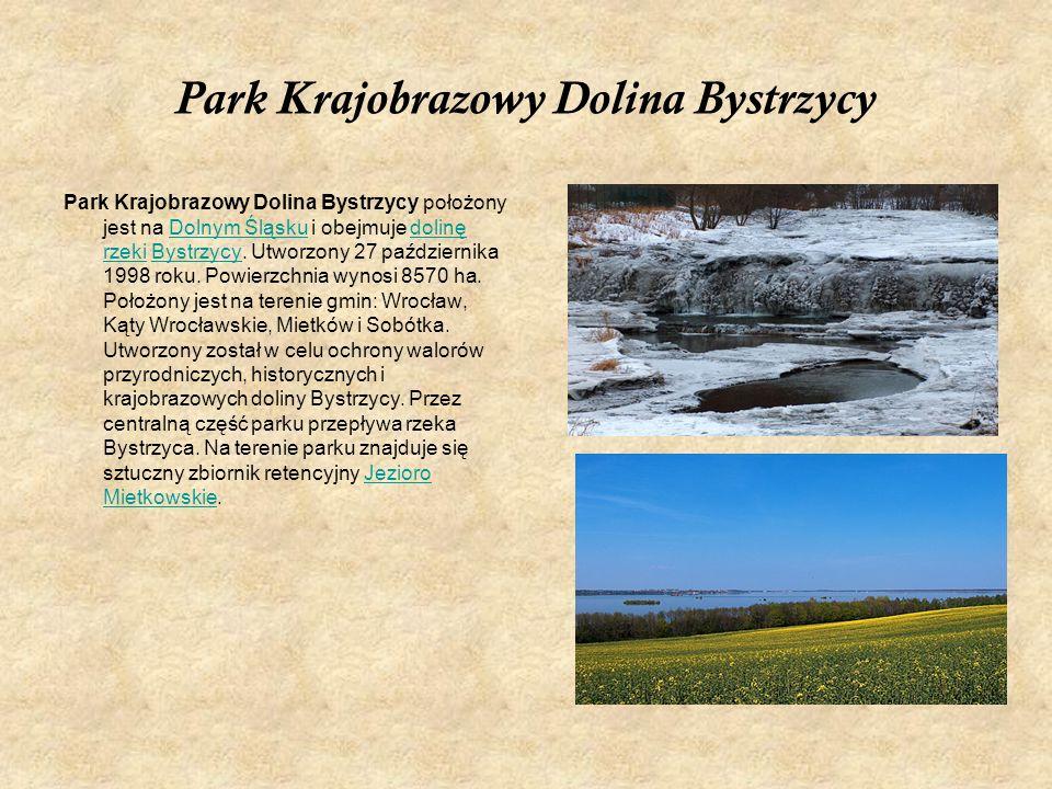 Park Krajobrazowy Dolina Bystrzycy Park Krajobrazowy Dolina Bystrzycy położony jest na Dolnym Śląsku i obejmuje dolinę rzeki Bystrzycy. Utworzony 27 p