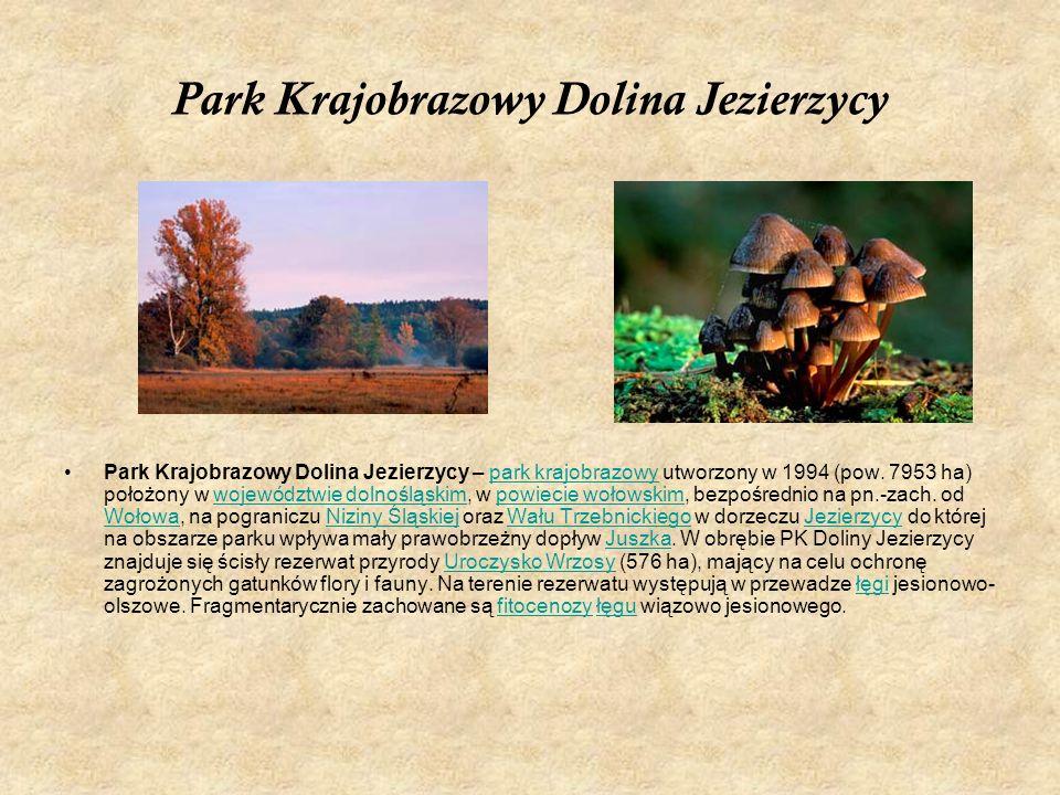 Park Krajobrazowy Dolina Jezierzycy Park Krajobrazowy Dolina Jezierzycy – park krajobrazowy utworzony w 1994 (pow. 7953 ha) położony w województwie do