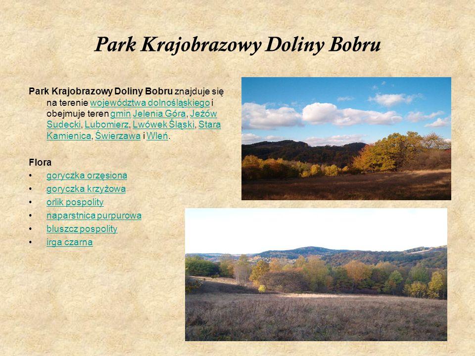 Park Krajobrazowy Doliny Bobru Park Krajobrazowy Doliny Bobru znajduje się na terenie województwa dolnośląskiego i obejmuje teren gmin Jelenia Góra, J