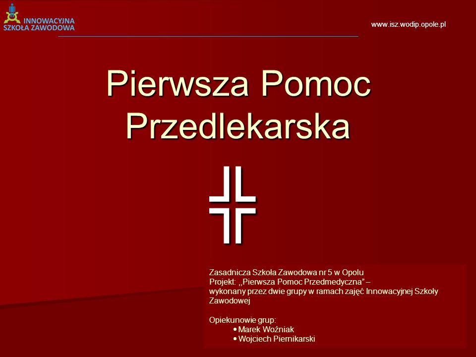 Dziękuję za uwagę Dziękuję za uwagę Opole 2010 Opole 2010