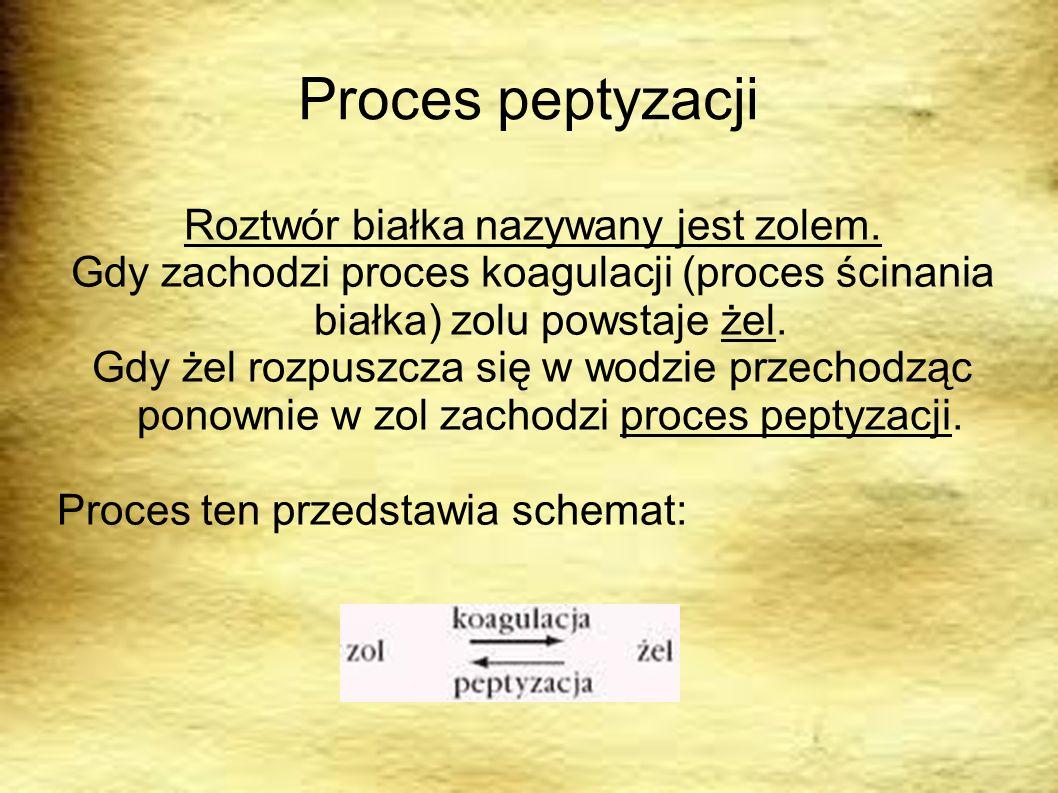Proces peptyzacji Roztwór białka nazywany jest zolem. Gdy zachodzi proces koagulacji (proces ścinania białka) zolu powstaje żel. Gdy żel rozpuszcza si