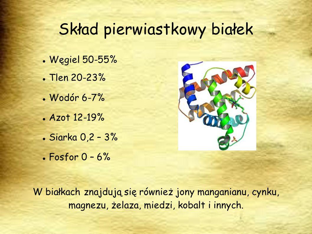 Skład pierwiastkowy białek Węgiel 50-55% Tlen 20-23% Wodór 6-7% Azot 12-19% Siarka 0,2 – 3% Fosfor 0 – 6% W białkach znajdują się również jony mangani