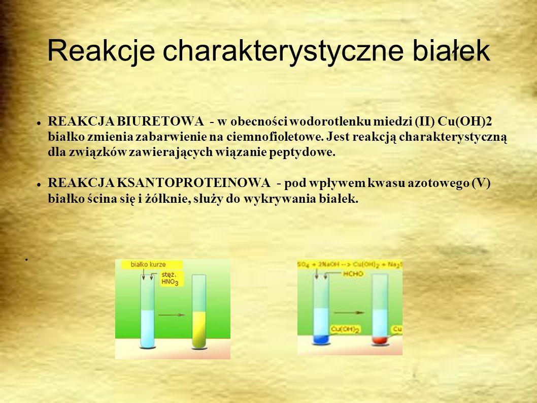Reakcje charakterystyczne białek REAKCJA BIURETOWA - w obecności wodorotlenku miedzi (II) Cu(OH)2 białko zmienia zabarwienie na ciemnofioletowe. Jest
