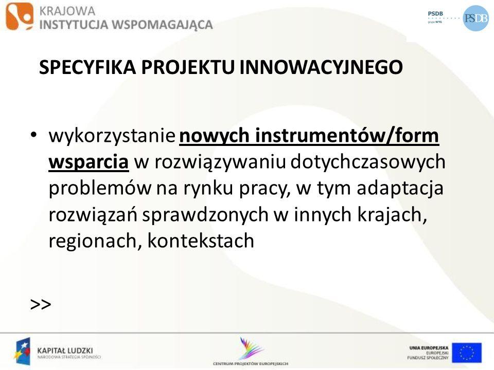 SPECYFIKA PROJEKTU INNOWACYJNEGO wykorzystanie nowych instrumentów/form wsparcia w rozwiązywaniu dotychczasowych problemów na rynku pracy, w tym adapt
