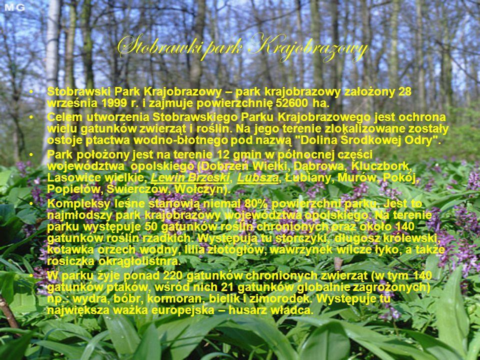 Stobrawki park Krajobrazowy Stobrawski Park Krajobrazowy – park krajobrazowy założony 28 września 1999 r. i zajmuje powierzchnię 52600 ha. Celem utwor