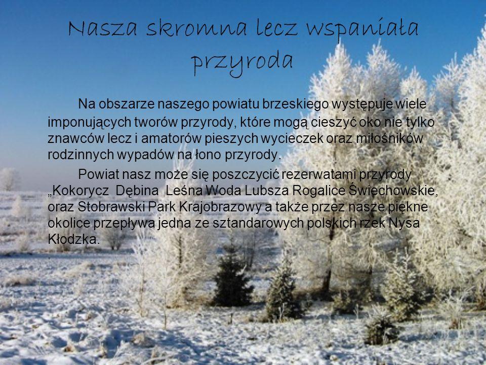 Nasza skromna lecz wspaniała przyroda Na obszarze naszego powiatu brzeskiego występuje wiele imponujących tworów przyrody, które mogą cieszyć oko nie