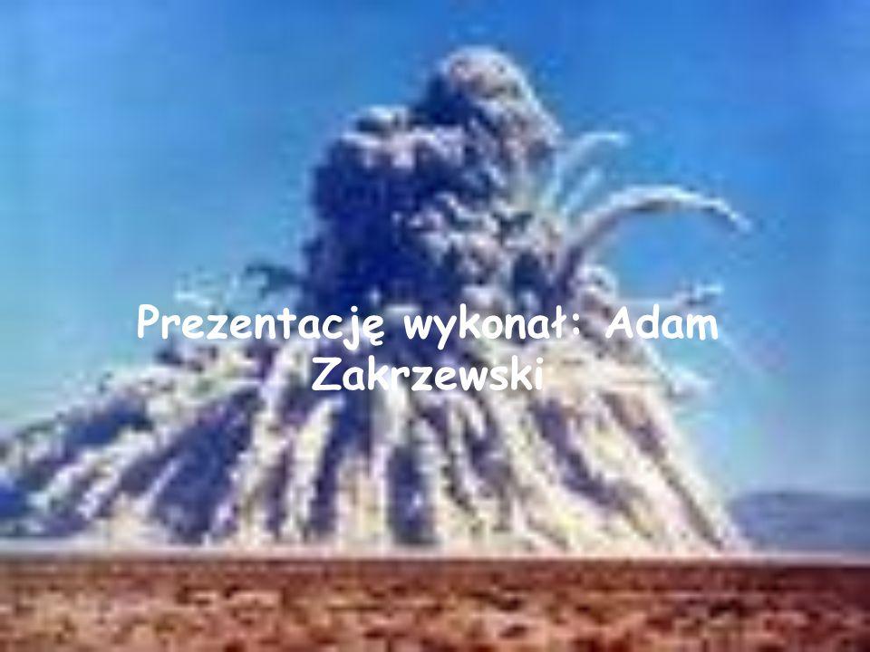 Prezentację wykonał: Adam Zakrzewski