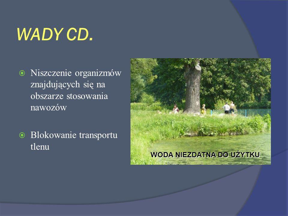 WADY CD. Niszczenie organizmów znajdujących się na obszarze stosowania nawozów Blokowanie transportu tlenu WODA NIEZDATNA DO UŻYTKU