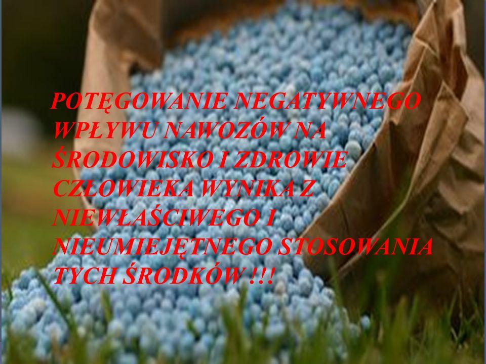 POTĘGOWANIE NEGATYWNEGO WPŁYWU NAWOZÓW NA ŚRODOWISKO I ZDROWIE CZŁOWIEKA WYNIKA Z NIEWŁAŚCIWEGO I NIEUMIEJĘTNEGO STOSOWANIA TYCH ŚRODKÓW !!!