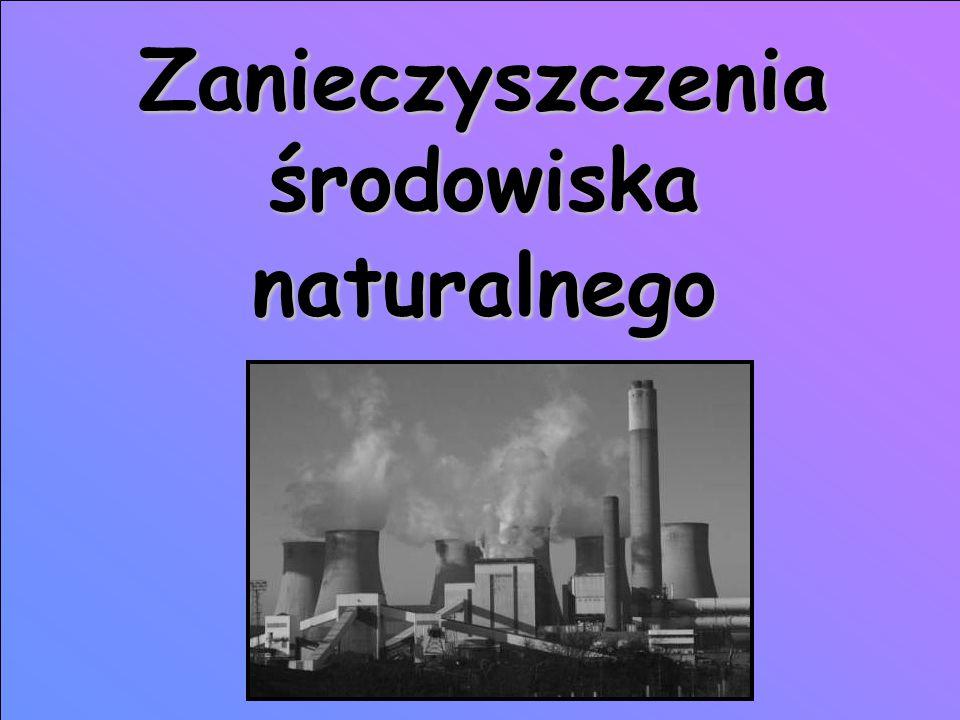 Zanieczyszczenia środowiska naturalnego