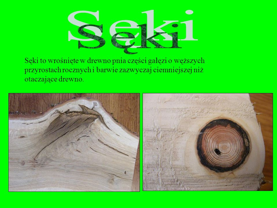 Polska norma PN – 79 / D – 01011 w następujący sposób definiuje wady: …za wadę drewna okrągłego uważa się widoczne uszkodzenie lub anomalie jego budow