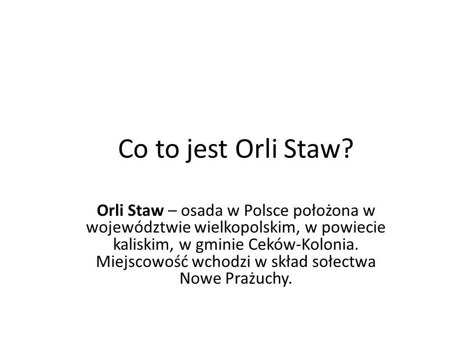 Co to jest Orli Staw? Orli Staw – osada w Polsce położona w województwie wielkopolskim, w powiecie kaliskim, w gminie Ceków-Kolonia. Miejscowość wchod