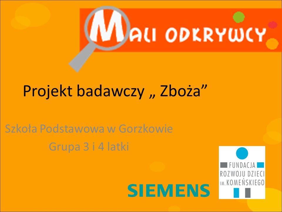 Projekt badawczy Zboża Szkoła Podstawowa w Gorzkowie Grupa 3 i 4 latki