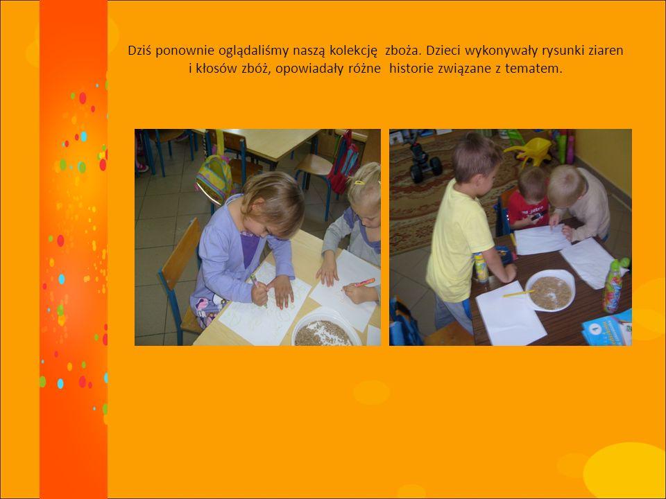Dziś ponownie oglądaliśmy naszą kolekcję zboża. Dzieci wykonywały rysunki ziaren i kłosów zbóż, opowiadały różne historie związane z tematem.