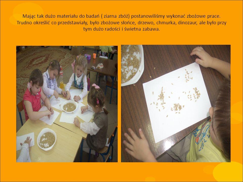 Mając tak dużo materiału do badań ( ziarna zbóż) postanowiliśmy wykonać zbożowe prace. Trudno określić co przedstawiały, było zbożowe słońce, drzewo,