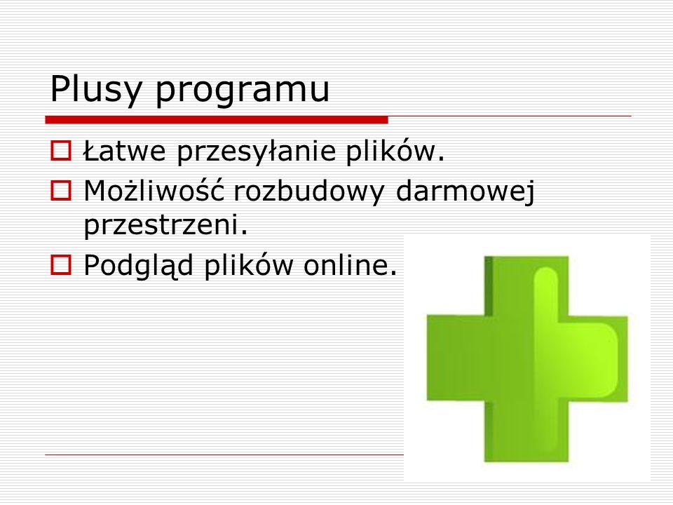 Minusy programu Brak polskiej wersji językowej Brak edycji plików online