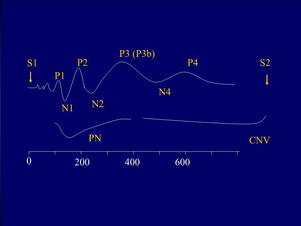P1 N1 P2 N2 P3 (P3b) N4 P4 PN S1 0 200600 400 S2 CNV