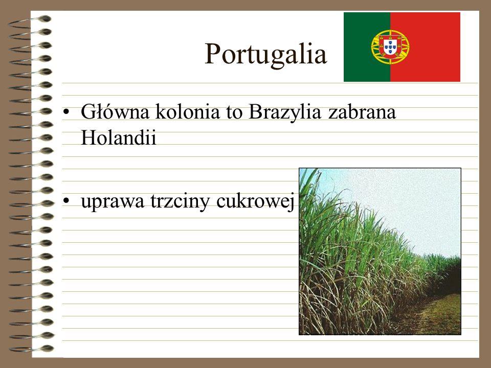 Portugalia Główna kolonia to Brazylia zabrana Holandii uprawa trzciny cukrowej
