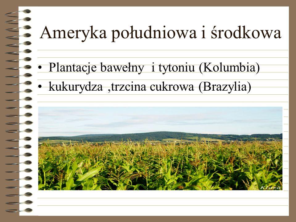 Ameryka południowa i środkowa Plantacje bawełny i tytoniu (Kolumbia) kukurydza,trzcina cukrowa (Brazylia)