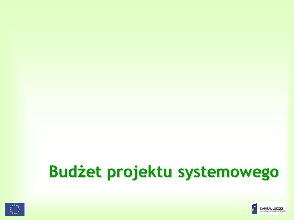 103 Budżet projektu systemowego
