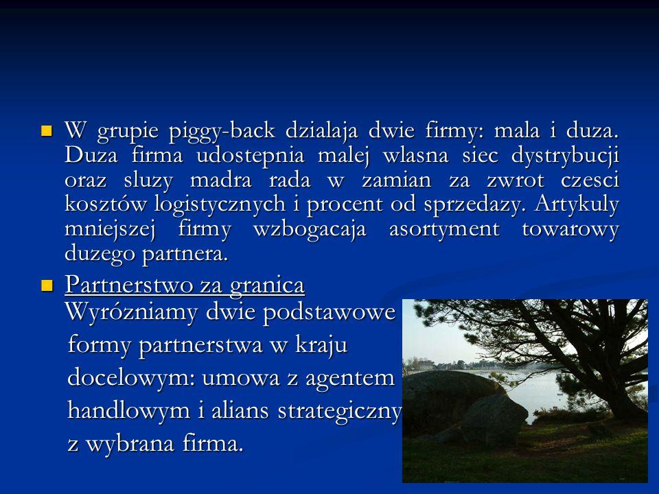 W grupie piggy-back dzialaja dwie firmy: mala i duza. Duza firma udostepnia malej wlasna siec dystrybucji oraz sluzy madra rada w zamian za zwrot czes