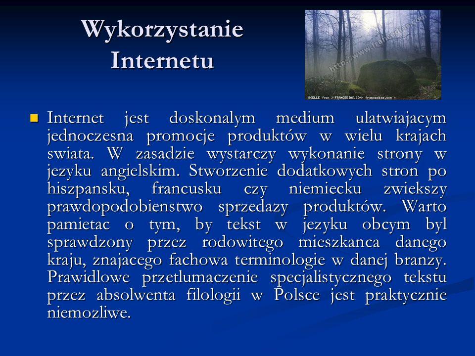Wykorzystanie Internetu Internet jest doskonalym medium ulatwiajacym jednoczesna promocje produktów w wielu krajach swiata. W zasadzie wystarczy wykon