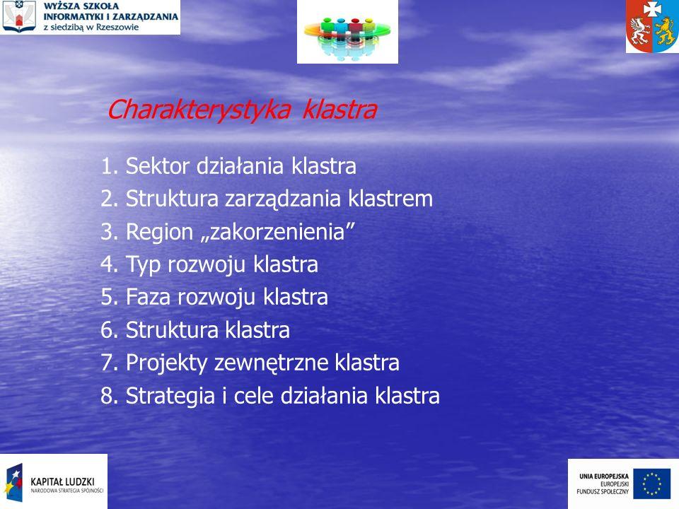 Charakterystyka klastra 1.Sektor działania klastra 2.Struktura zarządzania klastrem 3.Region zakorzenienia 4.Typ rozwoju klastra 5.Faza rozwoju klastr