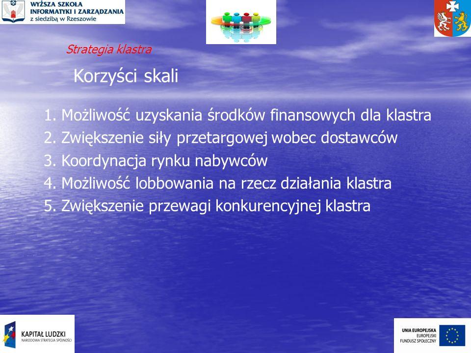Korzyści skali 1.Możliwość uzyskania środków finansowych dla klastra 2.Zwiększenie siły przetargowej wobec dostawców 3.Koordynacja rynku nabywców 4.Mo
