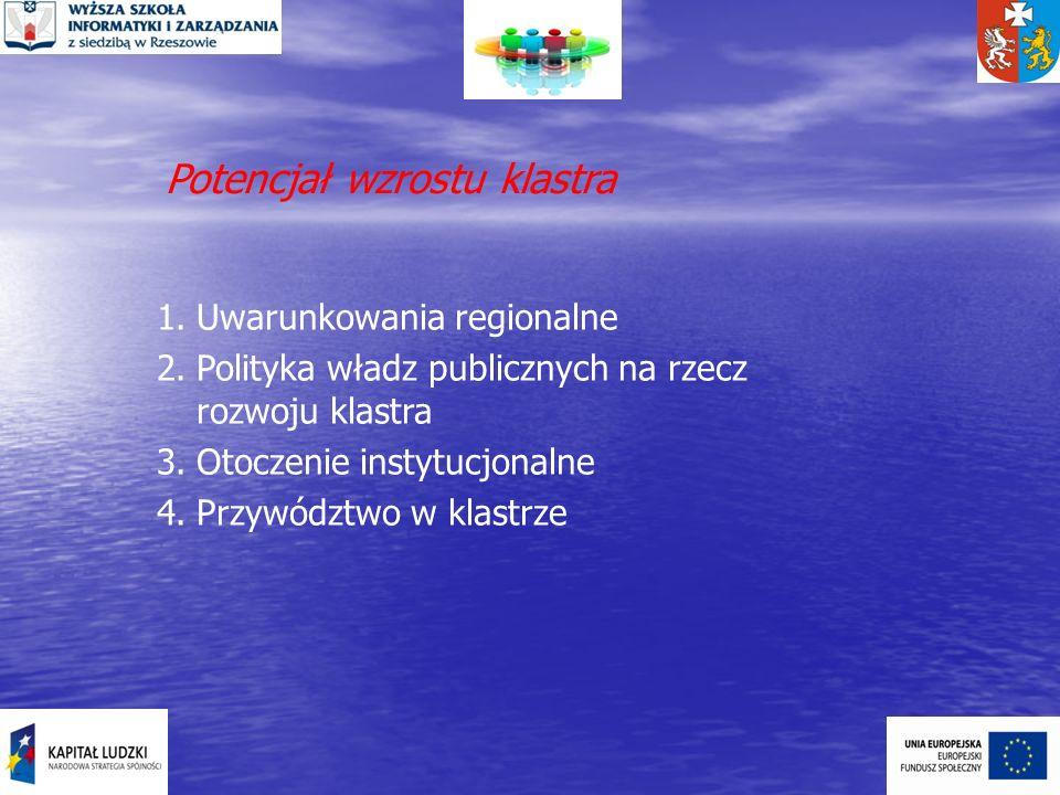 Potencjał wzrostu klastra 1.Uwarunkowania regionalne 2.Polityka władz publicznych na rzecz rozwoju klastra 3.Otoczenie instytucjonalne 4.Przywództwo w