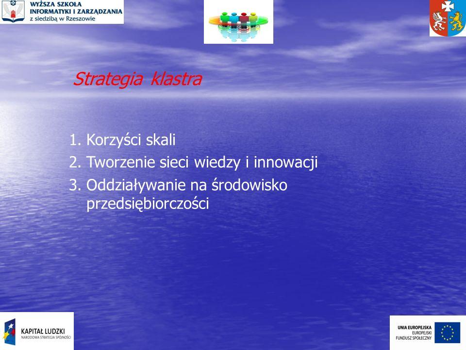 Strategia klastra 1.Korzyści skali 2.Tworzenie sieci wiedzy i innowacji 3.Oddziaływanie na środowisko przedsiębiorczości