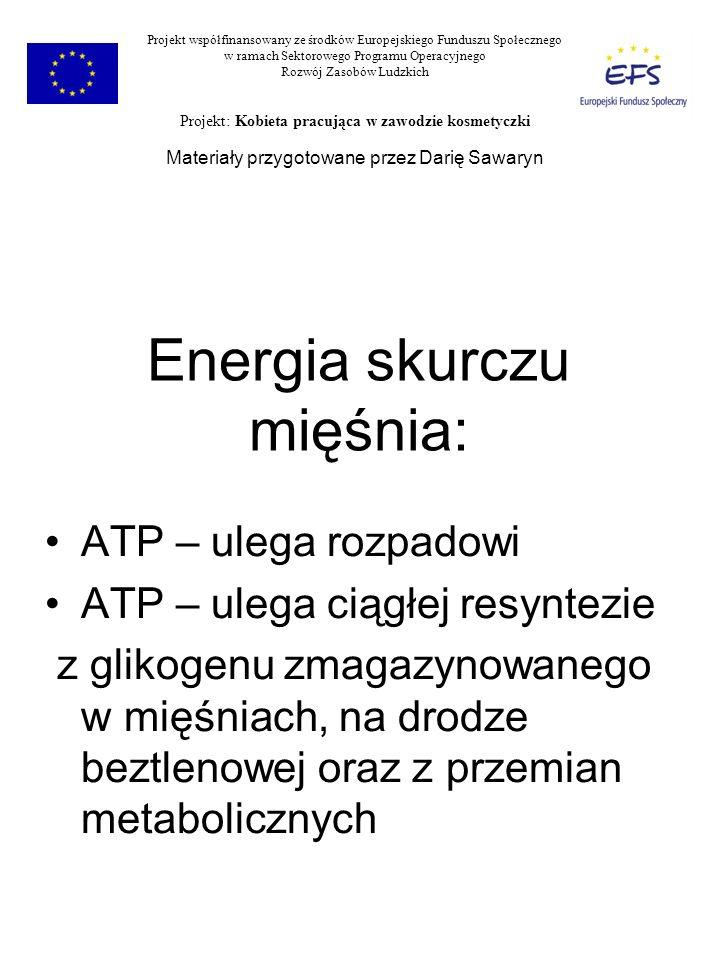 Energia skurczu mięśnia: ATP – ulega rozpadowi ATP – ulega ciągłej resyntezie z glikogenu zmagazynowanego w mięśniach, na drodze beztlenowej oraz z pr