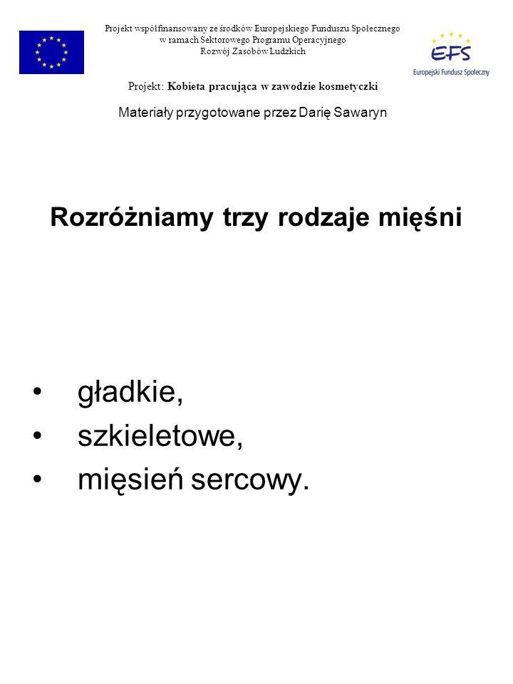 Komórka mięśniowa Sarkolemma Miofibryle Sarkoplazma (mitochondria) Układ sarkotubularny Projekt współfinansowany ze środków Europejskiego Funduszu Społecznego w ramach Sektorowego Programu Operacyjnego Rozwój Zasobów Ludzkich Projekt: Kobieta pracująca w zawodzie kosmetyczki Materiały przygotowane przez Darię Sawaryn