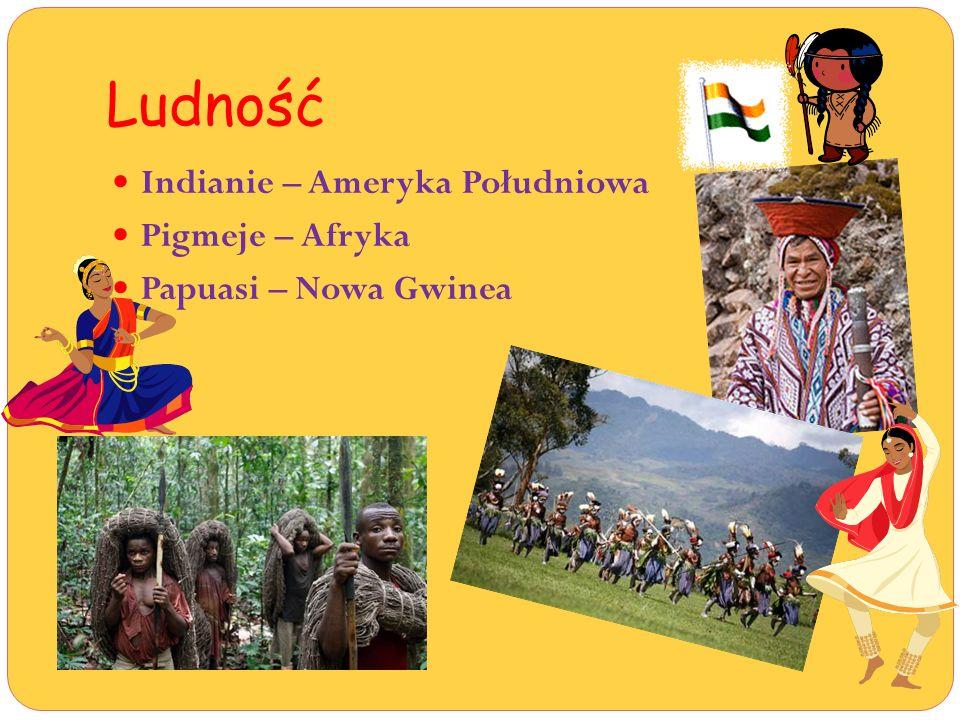 Ludność Indianie – Ameryka Południowa Pigmeje – Afryka Papuasi – Nowa Gwinea