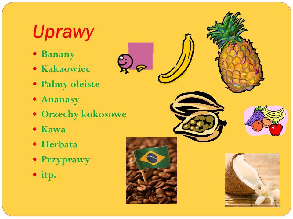 Uprawy Banany Kakaowiec Palmy oleiste Ananasy Orzechy kokosowe Kawa Herbata Przyprawy itp.