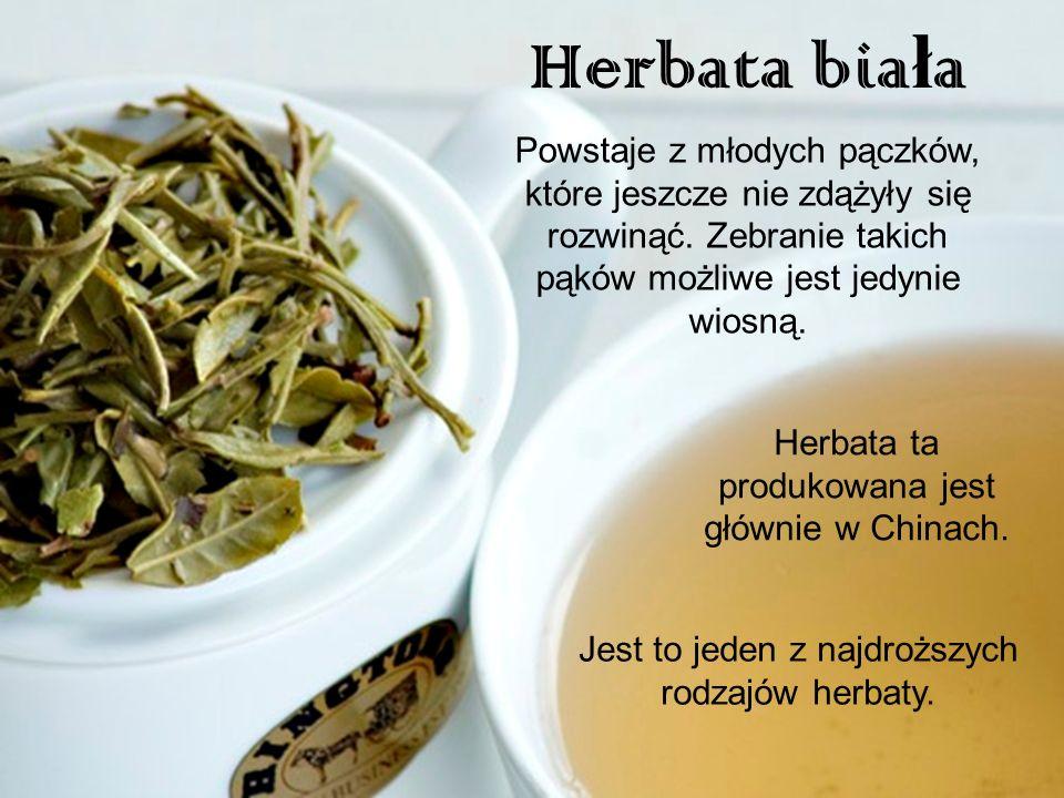 Herbata bia ł a Powstaje z młodych pączków, które jeszcze nie zdążyły się rozwinąć. Zebranie takich pąków możliwe jest jedynie wiosną. Jest to jeden z