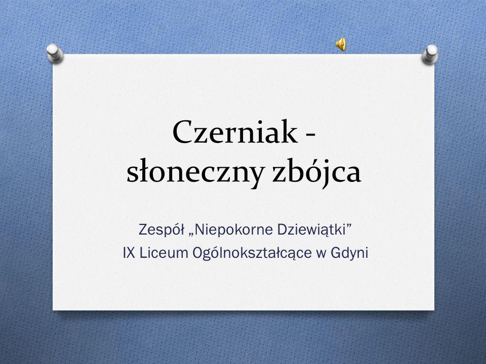 Czerniak - słoneczny zbójca Zespół Niepokorne Dziewiątki IX Liceum Ogólnokształcące w Gdyni