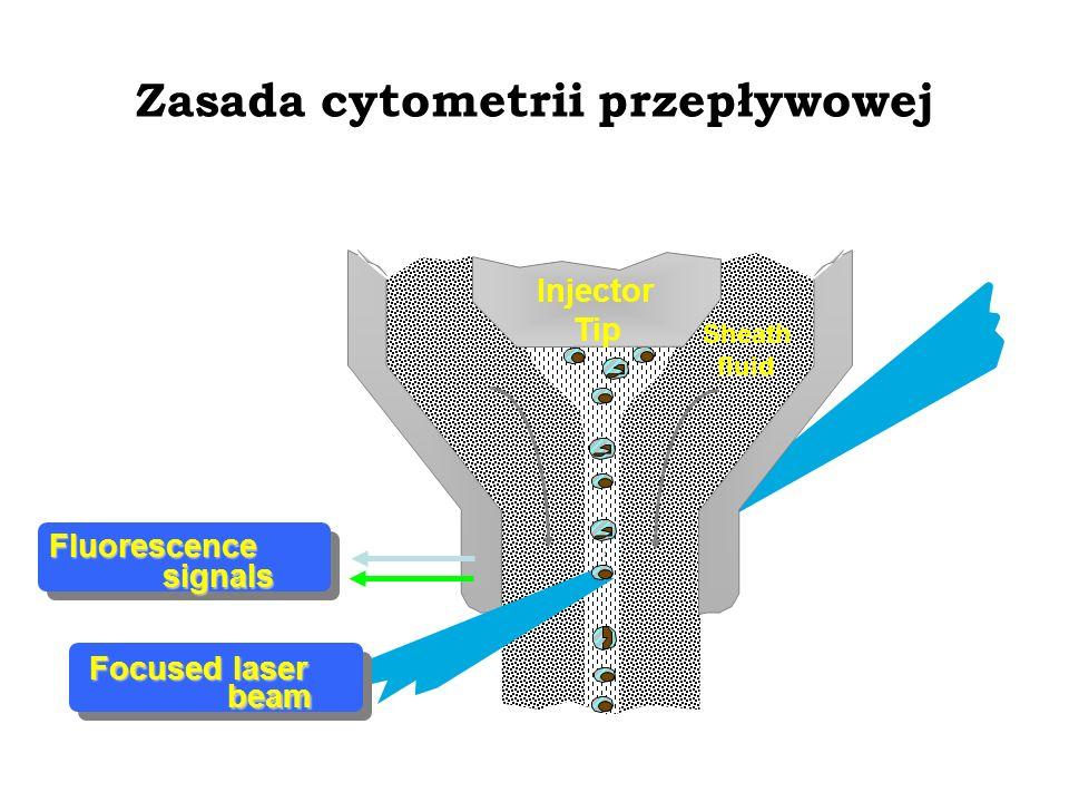 Zasada cytometrii przepływowej Injector Tip Fluorescence signals Focused laser beam Sheath fluid