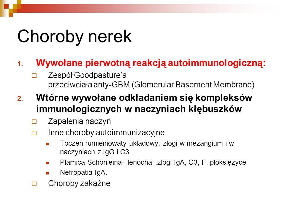 Choroby nerek 1. Wywołane pierwotną reakcją autoimmunologiczną: Zespół Goodpasturea przeciwciała anty-GBM (Glomerular Basement Membrane) 2. Wtórne wyw