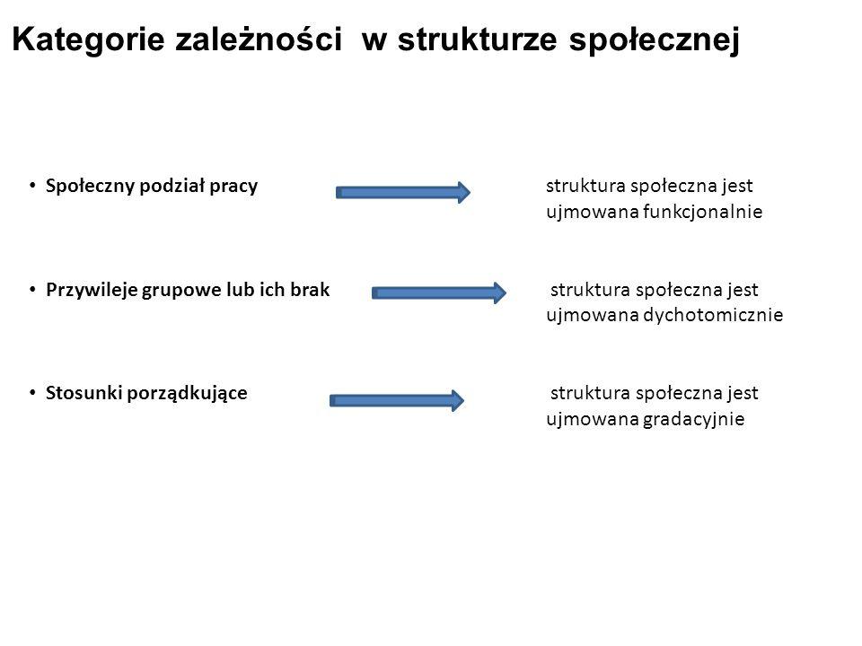 Kategorie zależności w strukturze społecznej Społeczny podział pracy struktura społeczna jest ujmowana funkcjonalnie Przywileje grupowe lub ich brak struktura społeczna jest ujmowana dychotomicznie Stosunki porządkujące struktura społeczna jest ujmowana gradacyjnie