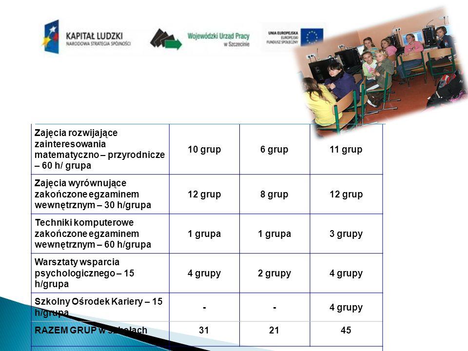Zajęcia rozwijające zainteresowania matematyczno – przyrodnicze – 60 h/ grupa 10 grup6 grup11 grup Zajęcia wyrównujące zakończone egzaminem wewnętrznym – 30 h/grupa 12 grup8 grup12 grup Techniki komputerowe zakończone egzaminem wewnętrznym – 60 h/grupa 1 grupa 3 grupy Warsztaty wsparcia psychologicznego – 15 h/grupa 4 grupy2 grupy4 grupy Szkolny Ośrodek Kariery – 15 h/grupa --4 grupy RAZEM GRUP w szkołach312145 RAZEM GRUP w projekcie97