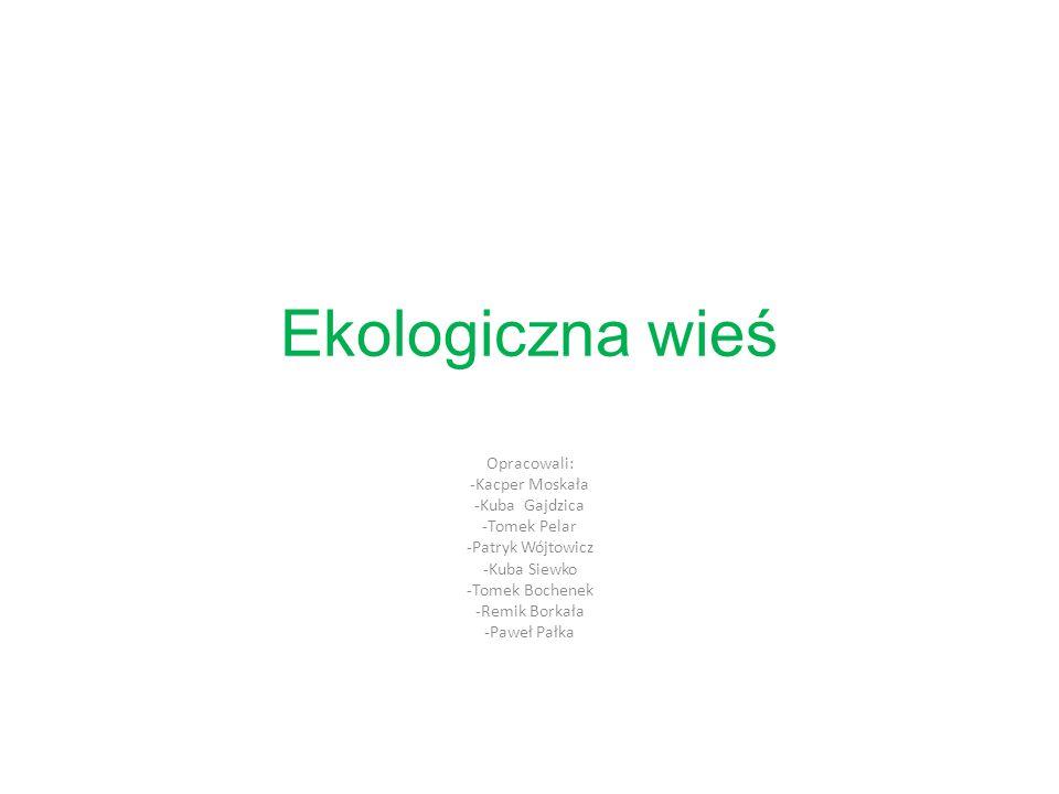 Ekologiczna wieś Opracowali: -Kacper Moskała -Kuba Gajdzica -Tomek Pelar -Patryk Wójtowicz -Kuba Siewko -Tomek Bochenek -Remik Borkała -Paweł Pałka