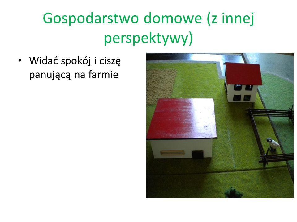 Gospodarstwo domowe (z innej perspektywy) Widać spokój i ciszę panującą na farmie