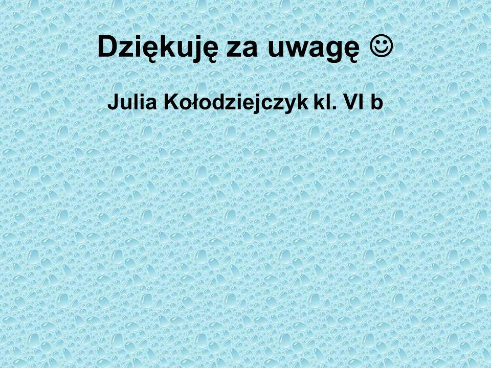 Dziękuję za uwagę Julia Kołodziejczyk kl. VI b