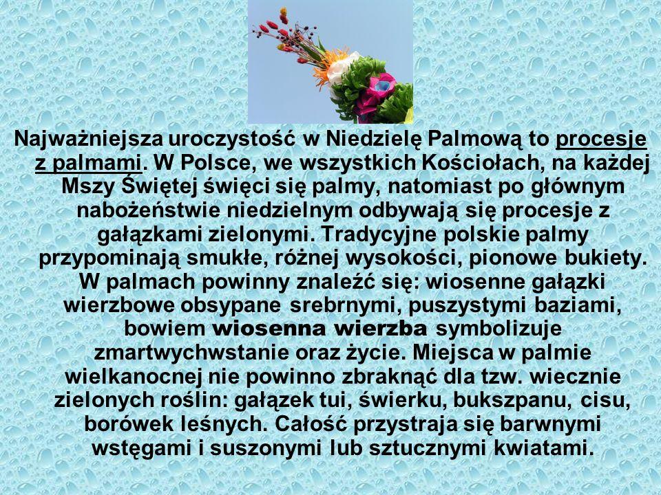 Najważniejsza uroczystość w Niedzielę Palmową to procesje z palmami. W Polsce, we wszystkich Kościołach, na każdej Mszy Świętej święci się palmy, nato