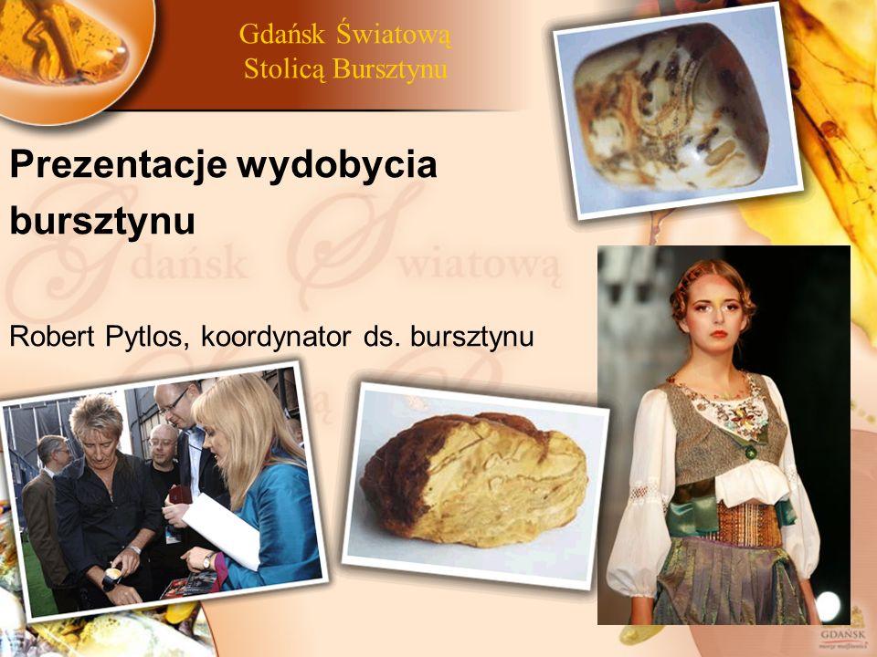 Gdańsk Światową Stolicą Bursztynu Prezentacje wydobycia bursztynu Robert Pytlos, koordynator ds. bursztynu