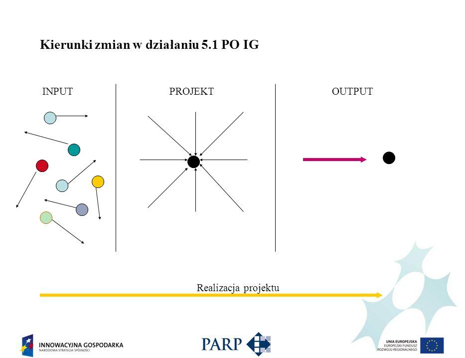 Kierunki zmian w działaniu 5.1 PO IG INPUT PROJEKT OUTPUT Realizacja projektu Realizacja projektu