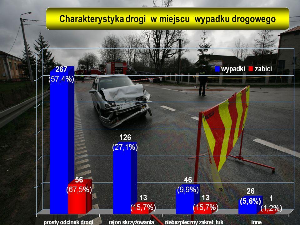 Charakterystyka drogi w miejscu wypadku drogowego